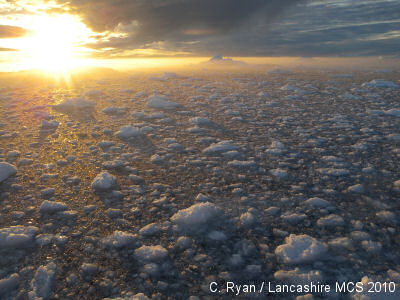 Greenland sea ice, by Chrissie Ryan