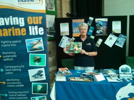 Kathy manning the stand at the Kite Festival.